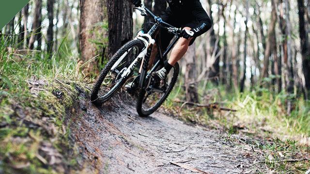 The Oaks Trail